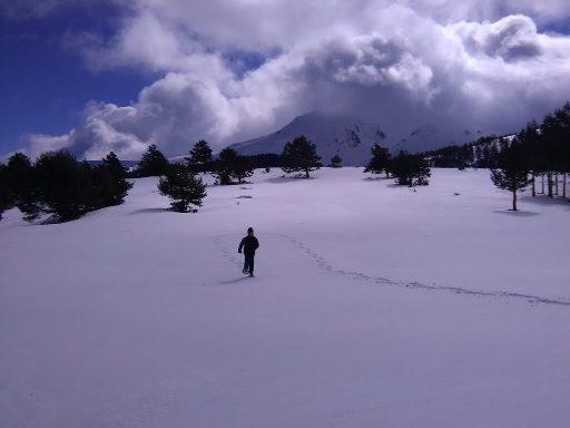 Nieve Navacerrada